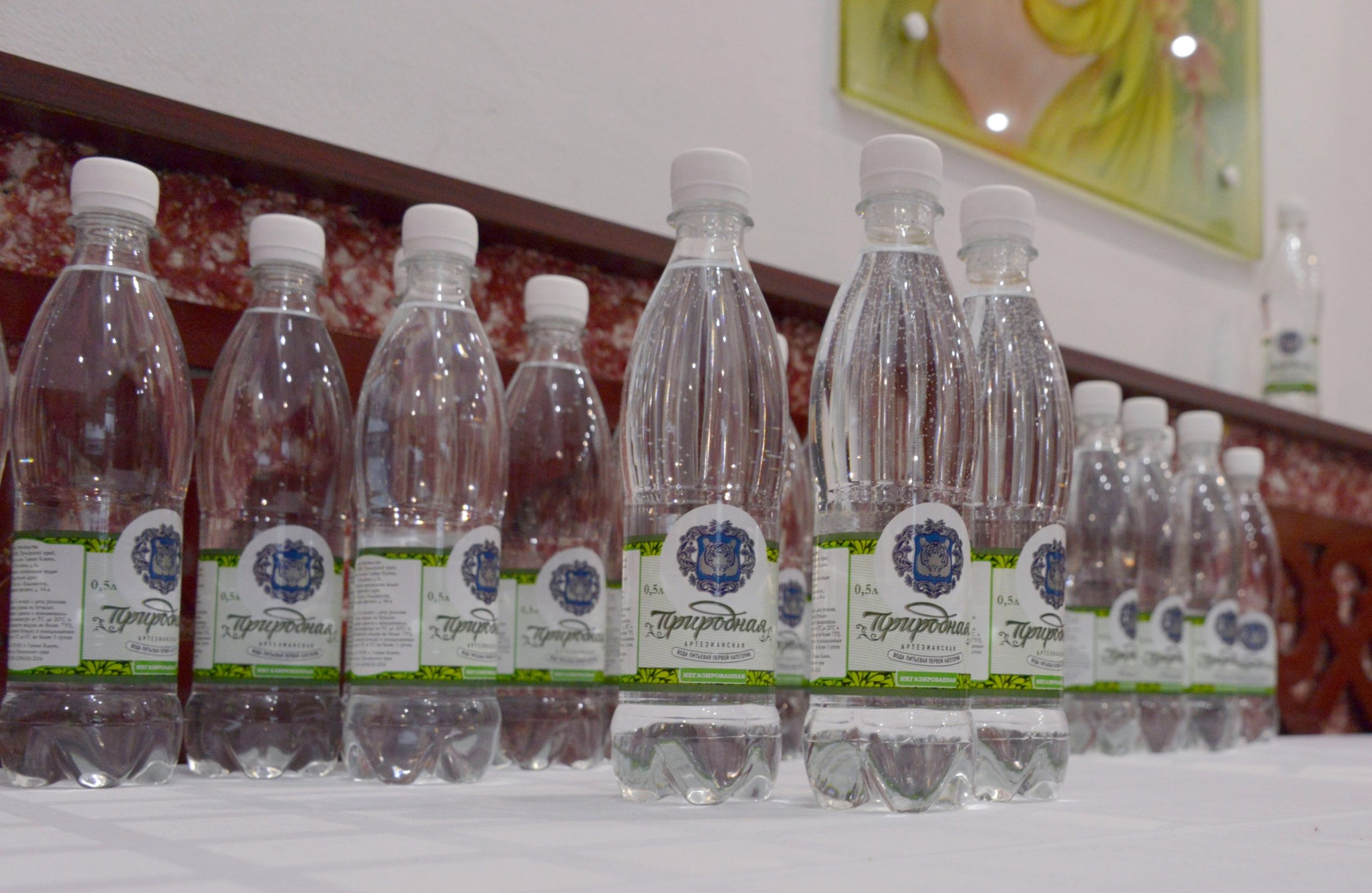 """Conference guests were treated with """"Prirodnaya"""" artesian water"""